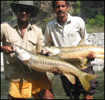 Masheer Fishing Camp Yamuna